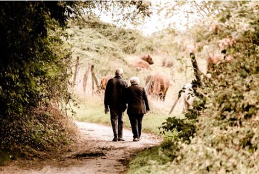 renta vitalicia de jubilación