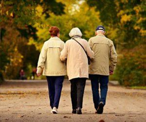 renta vitalicia jubilacion